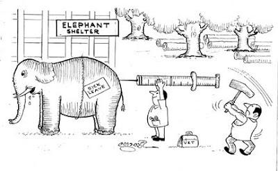 Cartoonist Joy Kulanada Joy Kulanada