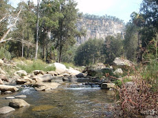 Carnarvon Gorge