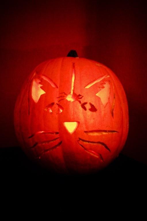 [pumpkin.jpg]
