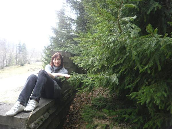 Vraja pădurilor bucovinene e aceeaşi, în fiecare anotimp...