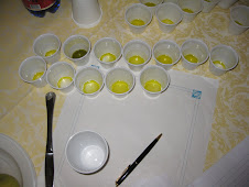 Tasing 12 Olive Oils