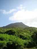 Cerro Guayamurí