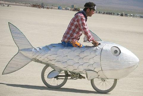 http://2.bp.blogspot.com/_xr5zEgm1DBk/TKgGHAg59OI/AAAAAAAAEX0/k9YAYvdlmSE/s1600/Velorution+-+Fish+bike.jpg