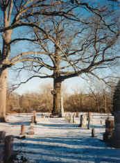 Kingsville Cemetery
