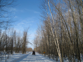 Along the snowmobile trail