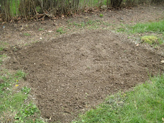Leveled garden plot with gravel removed