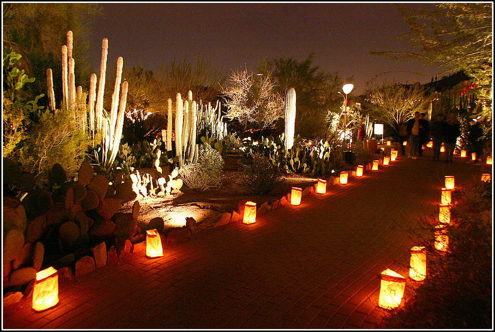 Desert Botanical Garden Luminaries So Much To See And Do On Getaway To Scottsdale Taking The