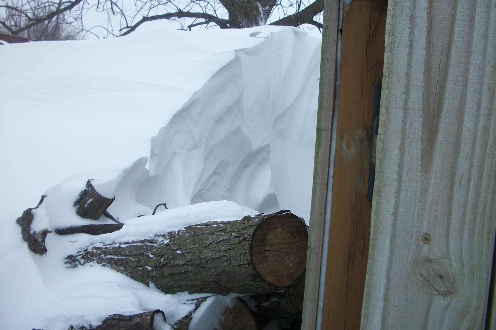 . And why should I be so worried about getting into the wood pile #3E688D