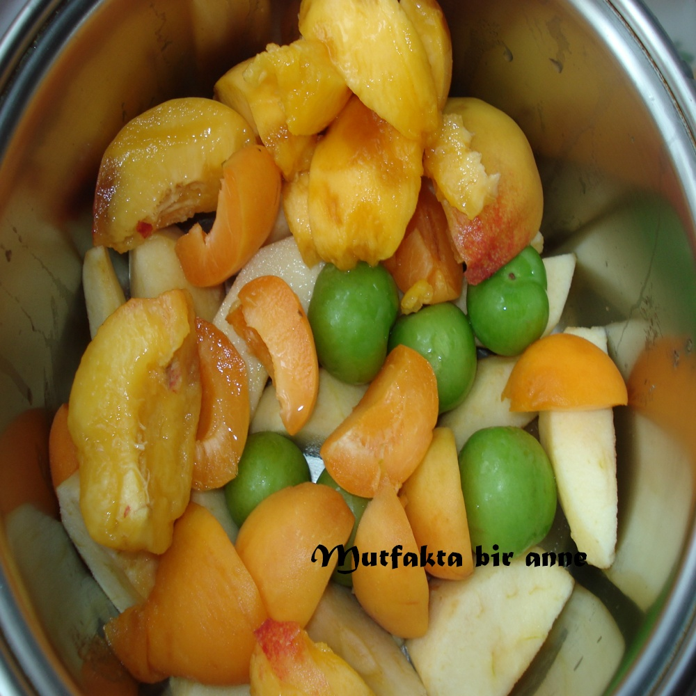 Taze Meyve Kompostosu