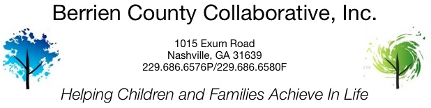 Berrien County   Collaborative, Inc.