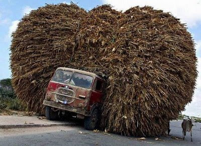 funny overloaded truck hay weird