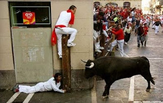crazy bull run photo in pamplona scared people hiding from bull funny