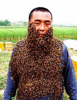 funny crazy man covered in bees swam photo