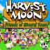 Belajar Cinta dan Bekerja dari Harvest Moon: Friends of Mineral town