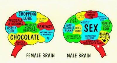 external image femalemale.jpg