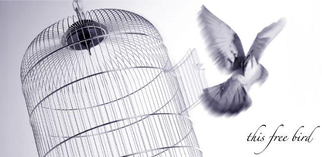 this free bird