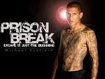 prison break cancelled, prison break canceled, wentworth miller, prison break news