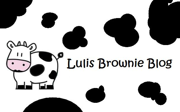 Lulis Brownie Blog