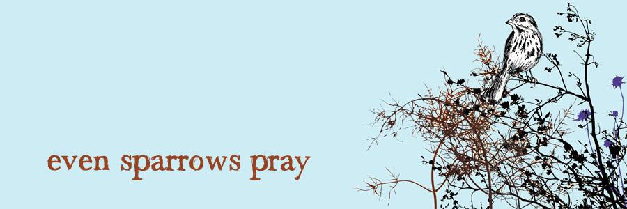Even Sparrows Pray