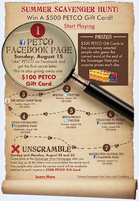 Click to view this Aug. 15, 2010 Petco email full-sized