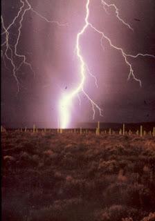 Lightning Field obra de Walter de Maria, artista que dio nombre al Land Art.