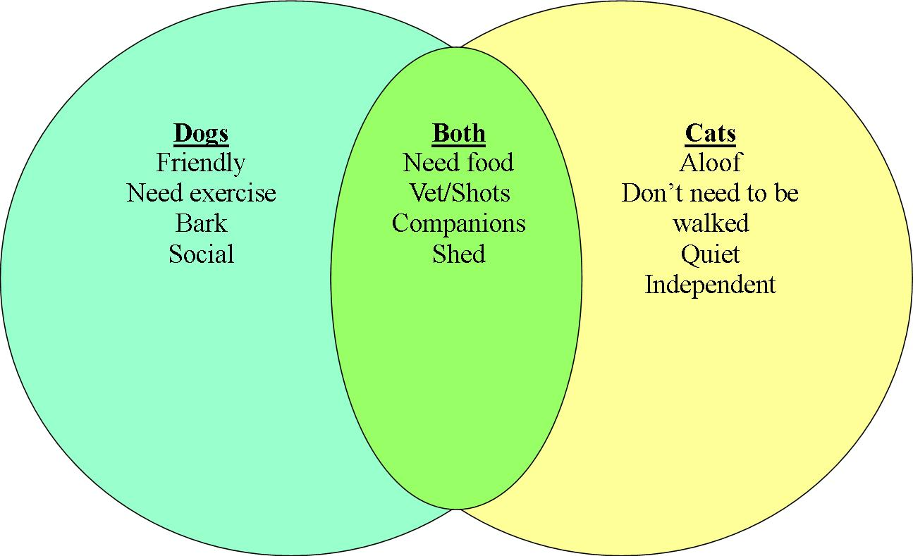 Compare and contrast essay between cats and dogs