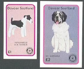 1984年Davaar Island(スコットランド) ワイアー・フォックス・テリア セント・バーナードのラベル