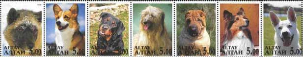 2000年アルタイ共和国 犬種不明 コーギー ロットワイラー ビアデッド・コリー シャー・ペイ シェットランド・シープドッグ ホワイト・スイス・シェパード・ドッグのラベル