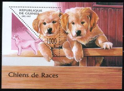 1997年ギニア共和国 ゴールデン・レトリーバーの切手シート