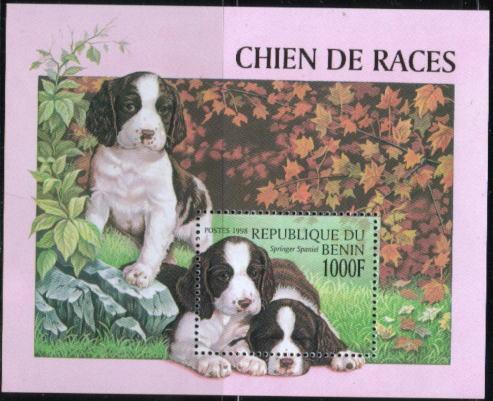 1998年ベニン共和国 イングリッシュ・スプリンガー・スパニエルの切手シート