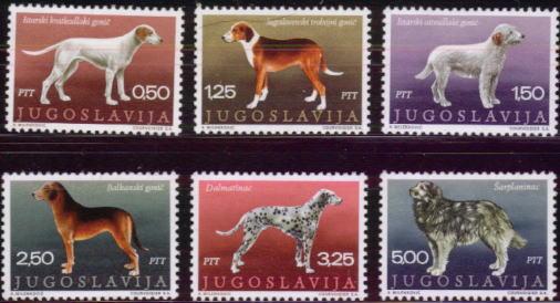 1970年ユーゴスラビア連邦共和国 イストリアン・スムースコーテッド・ハウンド ユーゴスラビアン・トライカラード・ハウンド イストリアン・ラフコーテッド・ハウンド バルカン・ハウンド ダルメシアン サハラ・マウンテン・ドッグの切手