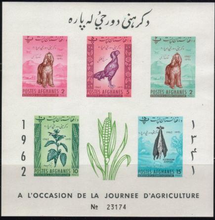 1962年アフガニスタン・イスラム国 アフガン・ハウンドの切手シート