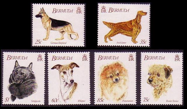 1992年バーミューダ ジャーマン・シェパード アイリッシュ・セター スキッパーキ ウィペット ポメラニアン ボーダー・テリアの切手