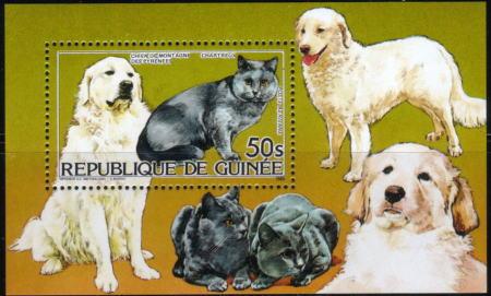 1985年ギニア共和国 グレート・ピレニーズと猫の切手シート