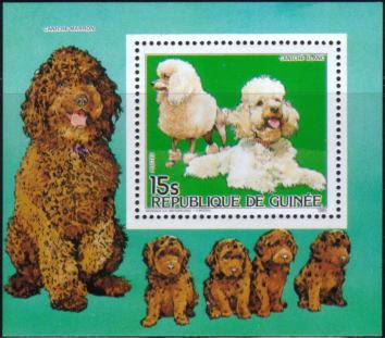 1985年ギニア共和国 プードルの切手シート