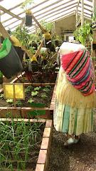 A FAO Greenhouse