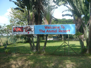 banner showing Animal Resort