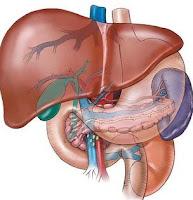 http://health-care-org.blogspot.com/
