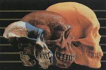El engaño de la Evolución