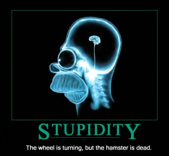 stupidity