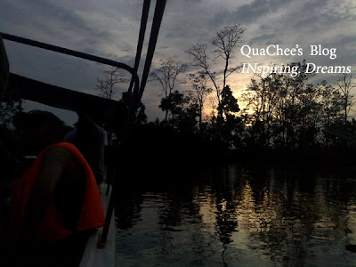 proboscis monkey tour sabah river cruise sunset
