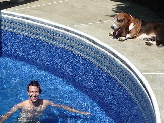 man dog swimming pool