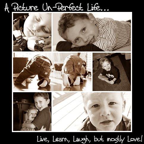 A Picture Un-perfect Life!