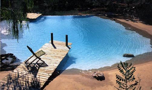 El bahia piscine cologique for Piscine ecologique