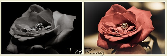 The Ring! So Beautiful!