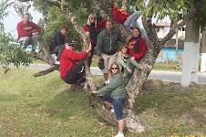 Domingo na Barra do Sul -  2009