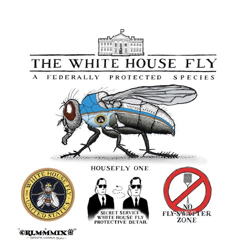 THE WHITE HOUSE FLY