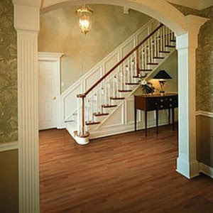 hardwood floors Entry