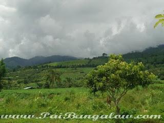 paithailand