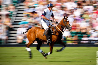 Polo Player by Marek Sikora - Photo of the Week